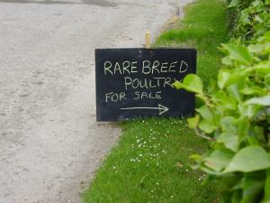 A sign outside my old smallholding.